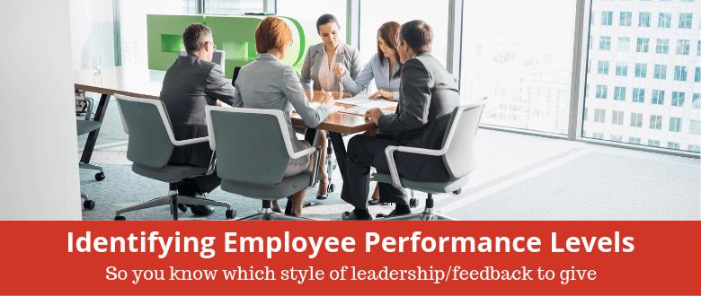 Identifying Employee Performance Levels
