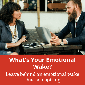 portal-emotional-wake